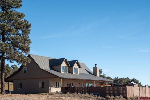44 Red Rooster, Durango, CO 81301 (MLS #753001) :: Durango Mountain Realty