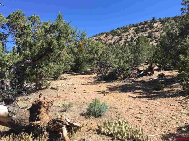 TBD Greenwood Avenue, Crawford, CO 81415 (MLS #753048) :: The Dawn Howe Group   Keller Williams Colorado West Realty