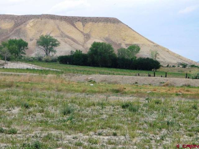 Lot #7 Stirrup Creek Road, Delta, CO 81416 (MLS #753052) :: The Dawn Howe Group | Keller Williams Colorado West Realty