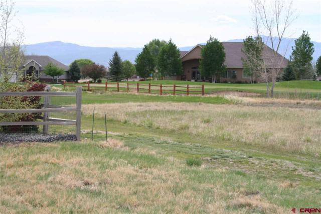 443 Cobble Drive, Montrose, CO 81403 (MLS #753067) :: Durango Home Sales
