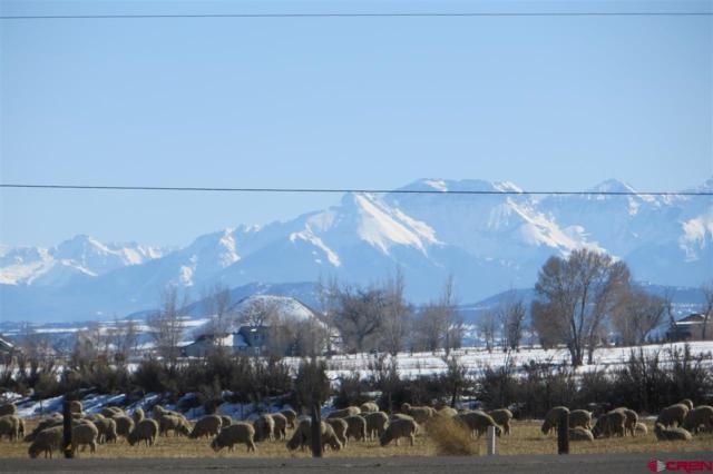 TBD Fellows Way, Montrose, CO 81401 (MLS #753071) :: Durango Home Sales