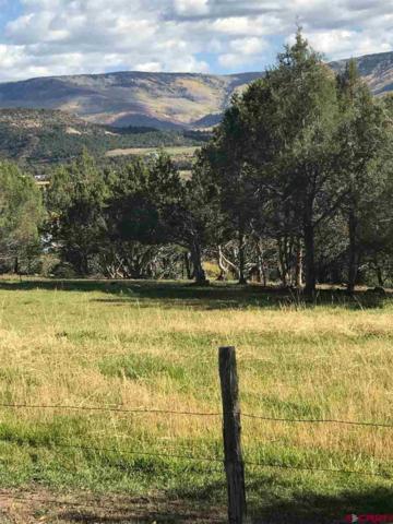 15716 58 7/10 Road Road, Collbran, CO 81624 (MLS #753111) :: CapRock Real Estate, LLC