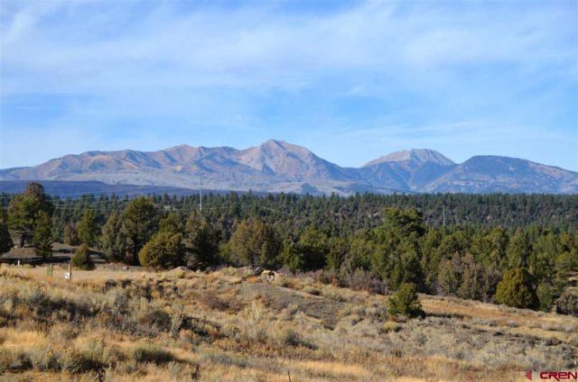 TBD Wildcat Trail, Hesperus, CO 81326 (MLS #753112) :: Durango Home Sales