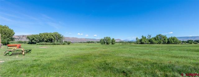 Lot 5 135 Highway, Gunnison, CO 81230 (MLS #753151) :: The Dawn Howe Group | Keller Williams Colorado West Realty
