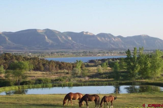 28852 Road L.6, Cortez, CO 81321 (MLS #753183) :: Durango Home Sales