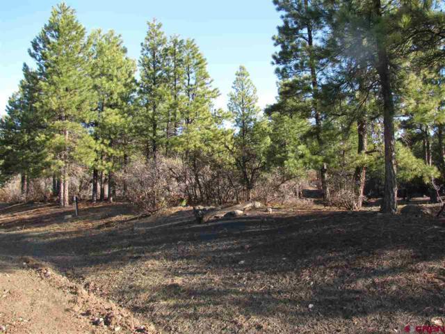 11 Tamarac Court, Pagosa Springs, CO 81147 (MLS #753223) :: Durango Home Sales