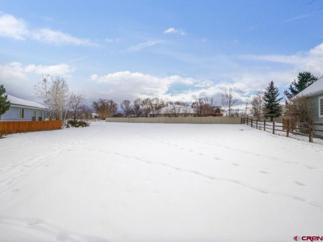 3739 Buffalo Lane, Montrose, CO 81403 (MLS #753229) :: Durango Home Sales