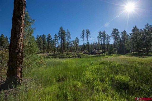 191 Old Stage Coach Pass, Durango, CO 81301 (MLS #753243) :: Durango Mountain Realty