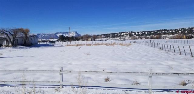TBD W 1st Street, Mancos, CO 81328 (MLS #753259) :: Durango Home Sales