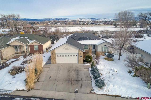 2433 Glen Haven Drive, Montrose, CO 81401 (MLS #753327) :: Durango Home Sales