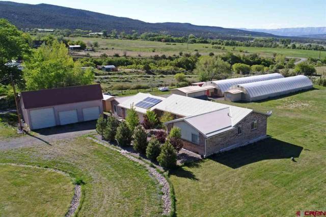 48386 Ie Road, Mesa, CO 81643 (MLS #753401) :: CapRock Real Estate, LLC