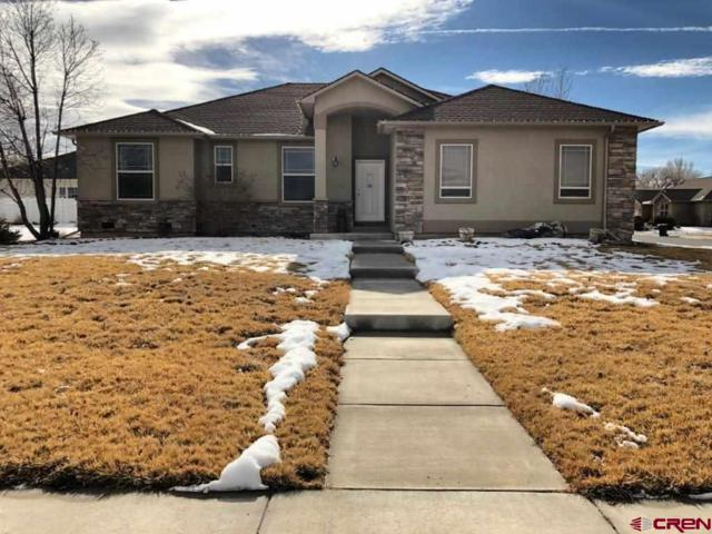 734 Antelope Street, Delta, CO 81416 (MLS #753441) :: CapRock Real Estate, LLC