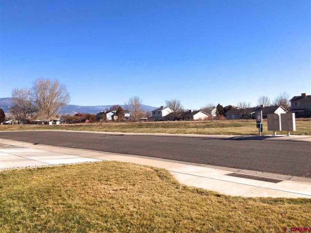 3168 Saddle Gulch Drive, Grand Junction, CO 81504 (MLS #753466) :: CapRock Real Estate, LLC
