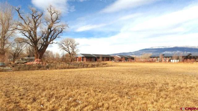 699 Highway 50, Delta, CO 81416 (MLS #753486) :: CapRock Real Estate, LLC