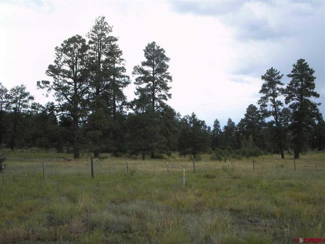 236 Arrowhead Drive, Pagosa Springs, CO 81147 (MLS #753500) :: Durango Home Sales