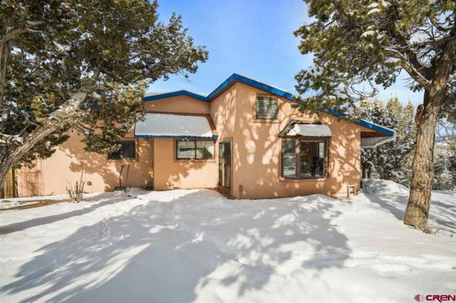 41 Ridge Place, Durango, CO 81303 (MLS #753516) :: Durango Mountain Realty