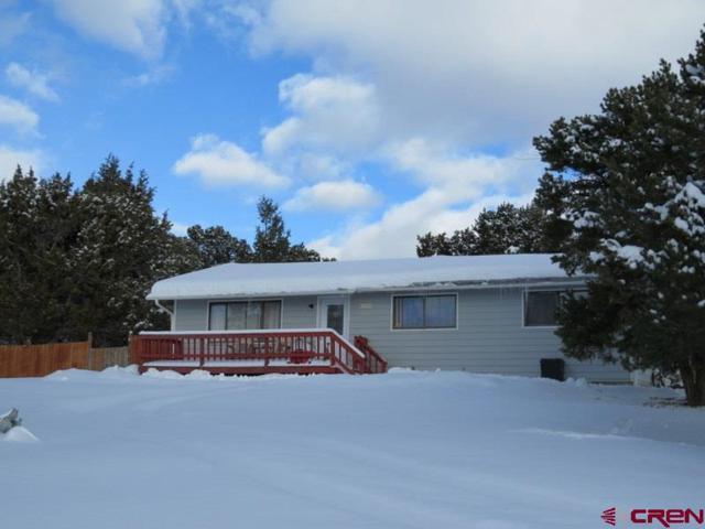 20264 Surface Creek, Cedaredge, CO 81413 (MLS #753535) :: CapRock Real Estate, LLC