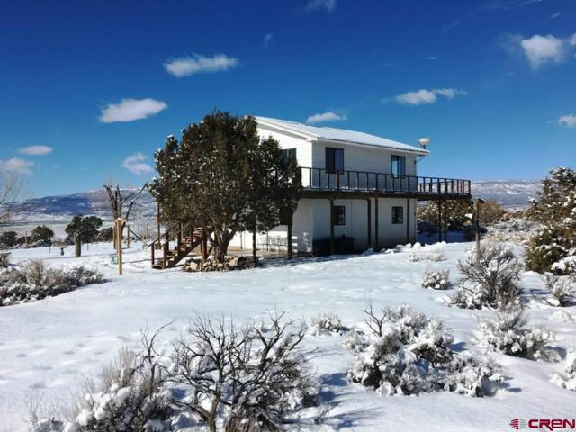 26215 Redlands Mesa Road, Hotchkiss, CO 81419 (MLS #753539) :: CapRock Real Estate, LLC