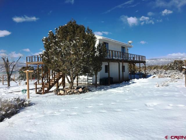 26215 Redlands Mesa Road, Hotchkiss, CO 81416 (MLS #753557) :: CapRock Real Estate, LLC