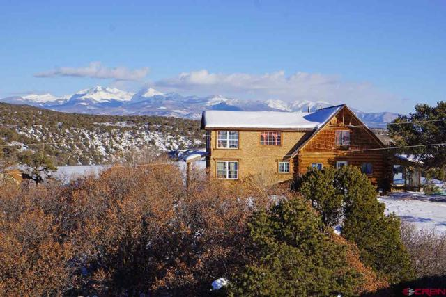 29989 Hwy 184, Dolores, CO 81323 (MLS #753558) :: CapRock Real Estate, LLC