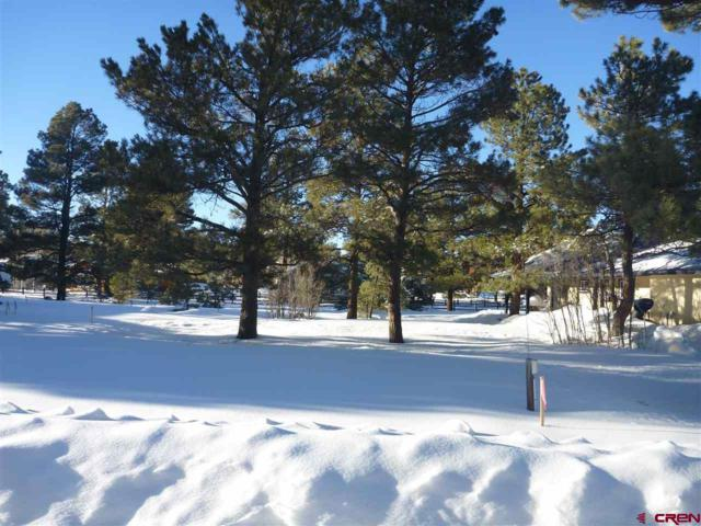 42 Wilderness Drive, Pagosa Springs, CO 81147 (MLS #753597) :: Durango Home Sales