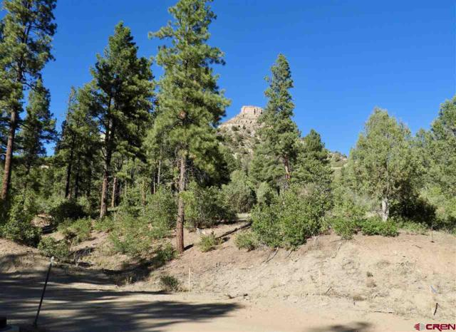(Lot 60) TBD Wild Iris Avenue, Durango, CO 81301 (MLS #753612) :: Durango Mountain Realty