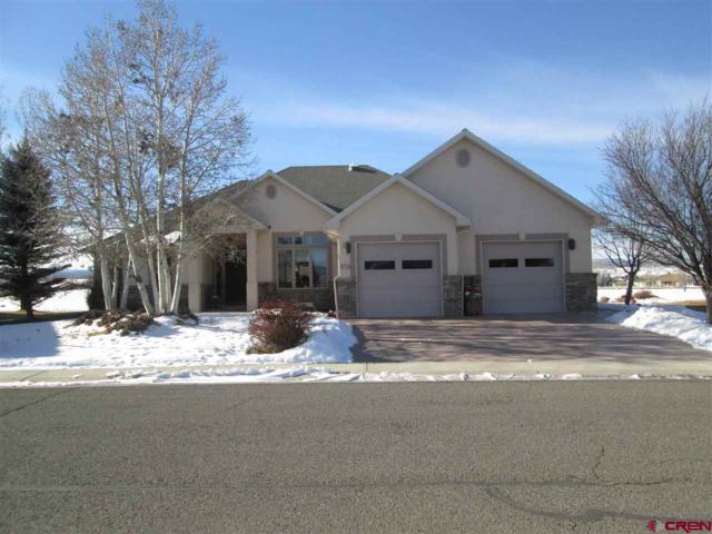 3724 Grand Mesa Drive, Montrose, CO 81403 (MLS #753628) :: Durango Home Sales