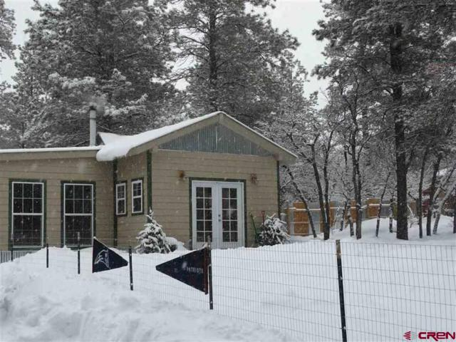442 Steep Place, Pagosa Springs, CO 81147 (MLS #753681) :: Durango Home Sales