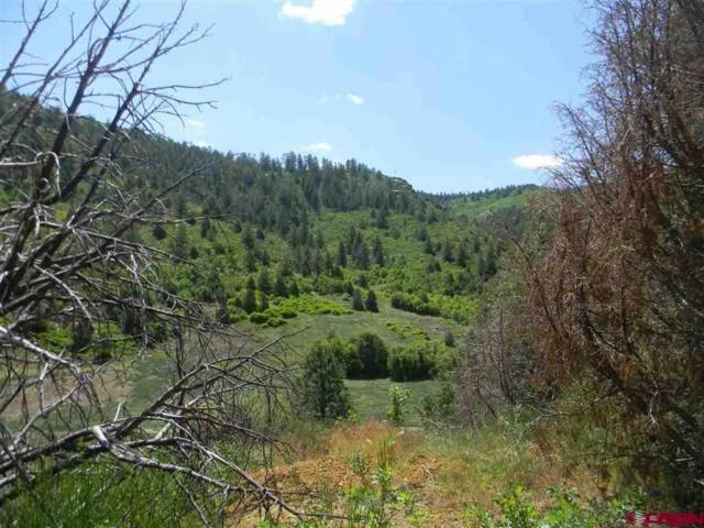 6727 Road 46, Mancos, CO 81328 (MLS #753712) :: The Dawn Howe Group   Keller Williams Colorado West Realty