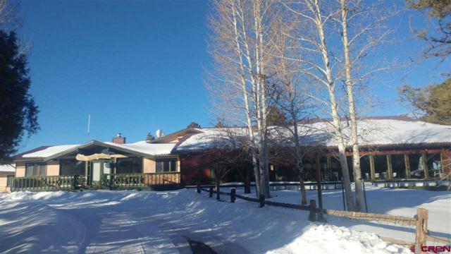 117 Ponderosa Drive, Ridgway, CO 81432 (MLS #753722) :: Durango Home Sales