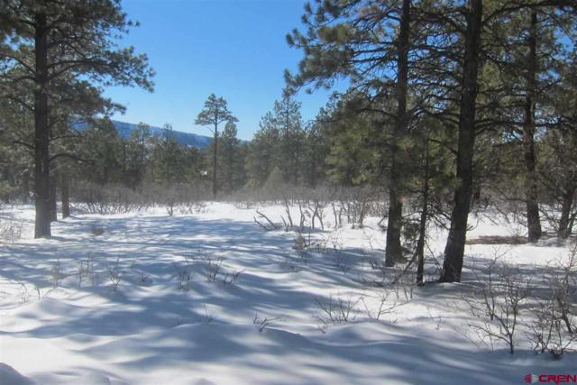 608 & 582 Far View, Pagosa Springs, CO 81147 (MLS #753739) :: Durango Home Sales