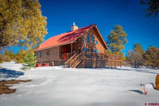 3190 Meadows Drive, Pagosa Springs, CO 81147 (MLS #753809) :: Durango Home Sales