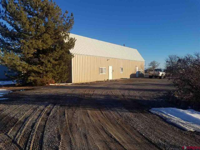 11030 Highway 65, Eckert, CO 81418 (MLS #753810) :: Durango Home Sales