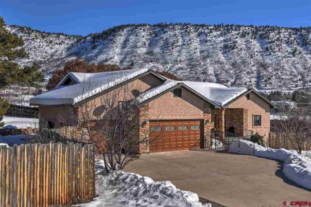 501 Cr 239, Durango, CO 81301 (MLS #753845) :: Durango Mountain Realty