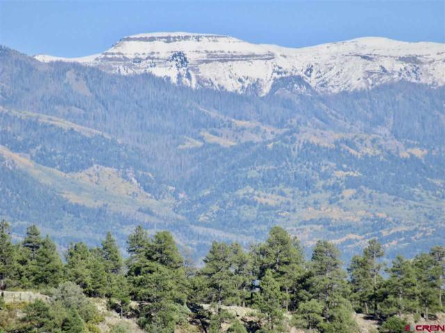 870 Quien Sabe  St Street, Pagosa Springs, CO 81147 (MLS #753898) :: Durango Home Sales