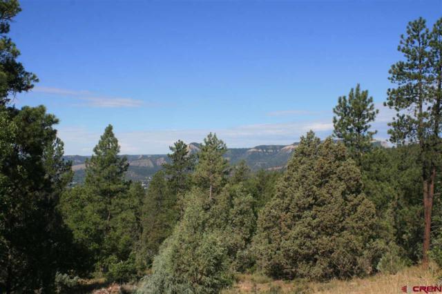 TBD Lot 1 Durango Cliffs Drive, Durango, CO 81301 (MLS #753974) :: Durango Mountain Realty