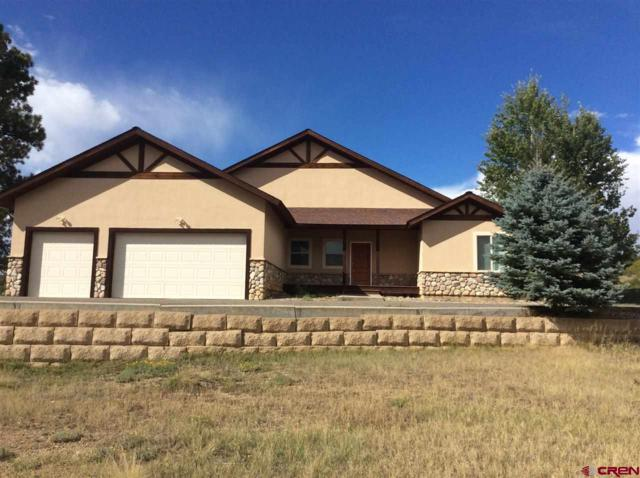 196 Dylan Drive, Pagosa Springs, CO 81147 (MLS #754006) :: Durango Home Sales
