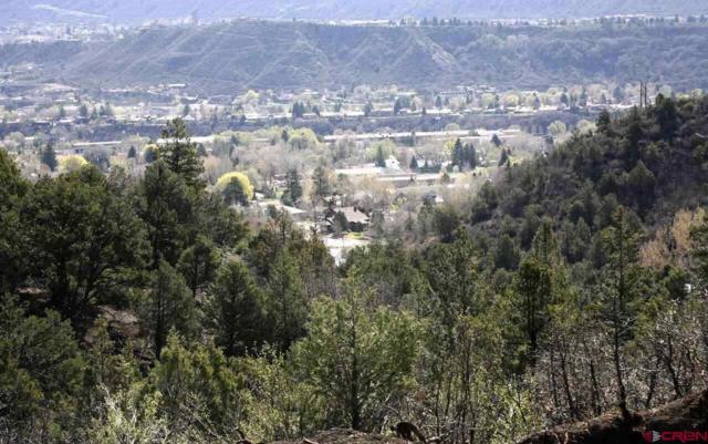998 N Hidden Valley Circle, Durango, CO 81301 (MLS #754030) :: Durango Mountain Realty