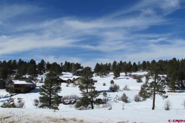 142 Capitan, Pagosa Springs, CO 81147 (MLS #754076) :: Durango Home Sales