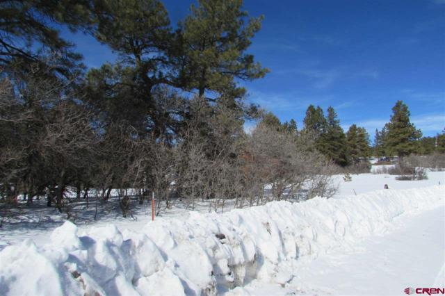 963 Mccabe, Pagosa Springs, CO 81147 (MLS #754077) :: Durango Home Sales