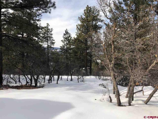 351 Summit Trail, Pagosa Springs, CO 81147 (MLS #754128) :: Durango Home Sales