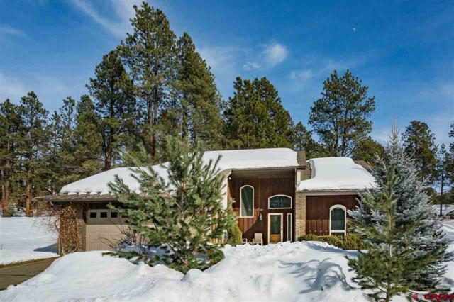 491 Hogan Circle, Durango, CO 81301 (MLS #754133) :: Durango Mountain Realty