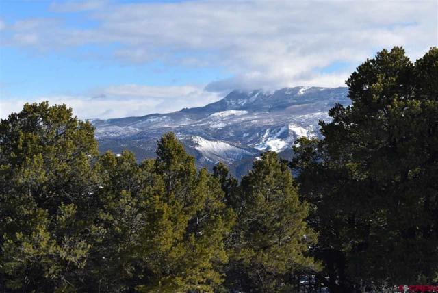 TBD Pinon Road East, Ridgway, CO 81432 (MLS #754146) :: The Dawn Howe Group | Keller Williams Colorado West Realty