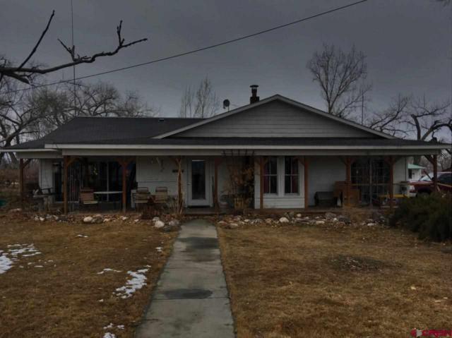 4767 5800 Road, Olathe, CO 81425 (MLS #754169) :: Durango Home Sales