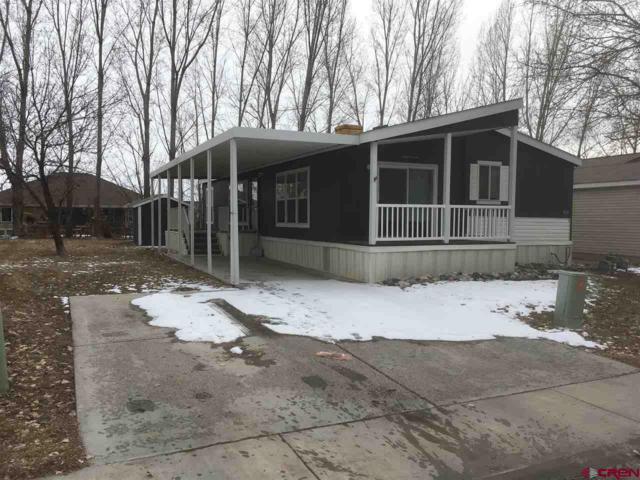 901 6530 Road #1010, Montrose, CO 81401 (MLS #754262) :: Durango Home Sales