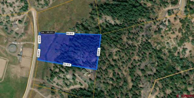 311 Bradley Place, Pagosa Springs, CO 81147 (MLS #754264) :: Durango Home Sales