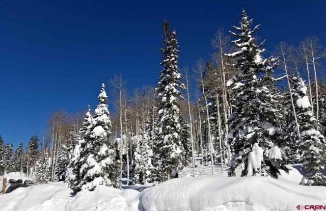 11 Storm Peak Drive, Durango, CO 81301 (MLS #754654) :: Durango Mountain Realty