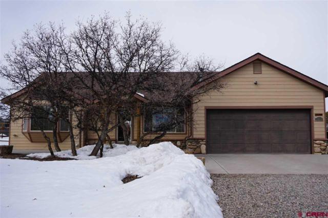 2655 Cr 220, Durango, CO 81303 (MLS #754679) :: Durango Mountain Realty
