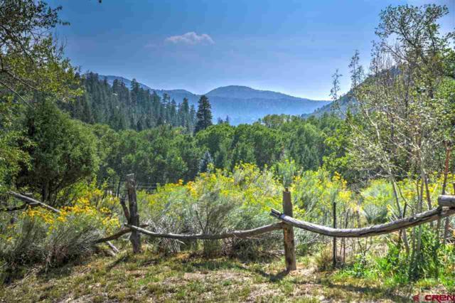 1383 Cr 204, Durango, CO 81301 (MLS #754974) :: Durango Mountain Realty
