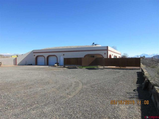 8365 2000 Road, Austin, CO 81410 (MLS #755170) :: The Dawn Howe Group | Keller Williams Colorado West Realty